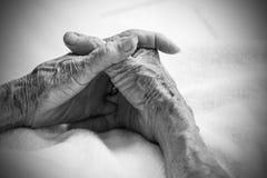 Manos de la mujer mayor Rebecca 36 Fotografía de archivo libre de regalías