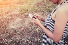 Manos de la mujer usando un smartphone en campo de flor en verano Fotos de archivo libres de regalías