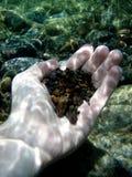 Manos de la naturaleza, del Caribe Foto de archivo libre de regalías
