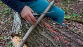 Manos de la ni?a o del muchacho que usa un cuchillo suizo, aserrando un pedazo de madera en el bosque, nadie almacen de video