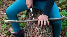 Manos de la ni?a o del muchacho que usa un cuchillo suizo, aserrando un pedazo de madera en el bosque, nadie almacen de metraje de vídeo