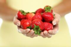 Manos de las mujeres que sostienen el primer de las frutas de las fresas Imágenes de archivo libres de regalías