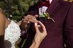 Manos de los anillos de bodas Foto de archivo