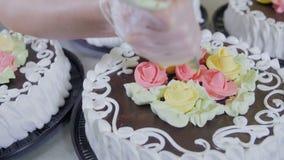Manos de los confiteros que adornan las tortas en transportador Proceso de producción de la torta almacen de video