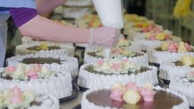 Manos de los confiteros que adornan las tortas en transportador Proceso de producción de la torta almacen de metraje de vídeo
