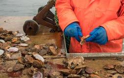 Manos de los crustáceos y de los mariscos cogidos frescos de Holding Knife Preparing del pescador para el sushi en un barco de pe Imagenes de archivo