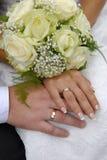 Manos de novia y del novio Fotografía de archivo