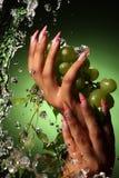Manos de una chica joven con una manicura agradable Fotografía de archivo