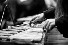 Manos de una muchacha que juega un glockenspiel Imagen de archivo