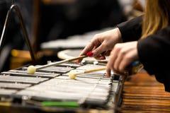 Manos de una muchacha que juega un glockenspiel Foto de archivo libre de regalías