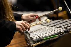 Manos de una muchacha que juega un glockenspiel Imagen de archivo libre de regalías