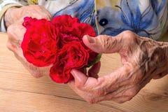 Manos de una mujer mayor con las rosas rojas foto de archivo