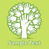 Manos del árbol en verde Imagen de archivo libre de regalías