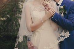 Manos del abarcamiento de novia y del novio Imagenes de archivo
