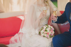 Manos del abarcamiento de novia y del novio Foto de archivo libre de regalías