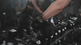 Manos del atleta de sexo femenino Taking Heavy Dumbbells El conseguir listo para el entrenamiento metrajes