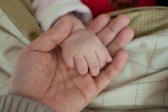 Manos del bebé y manos del papá Imágenes de archivo libres de regalías