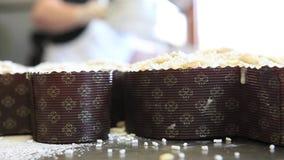 Manos del chef de repostería que asperjan el polvo del azúcar en la pasta para las palomas de la torta de Pascua almacen de video