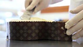 Manos del chef de repostería que hielan la pasta para las palomas de la torta de Pascua metrajes