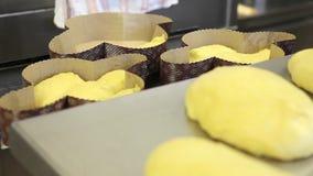 Manos del chef de repostería que preparan la pasta para las palomas de la torta de Pascua almacen de video