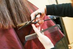 Manos del estilista profesional con las tijeras y el peine Fotos de archivo