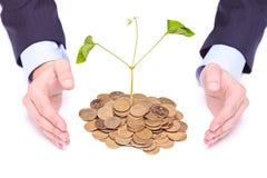 Manos del hombre de negocios que protegen la planta de dinero Imagen de archivo libre de regalías