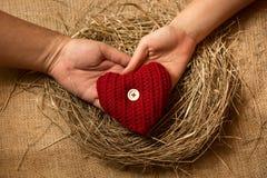 Manos del hombre y de la mujer que llevan a cabo el corazón rojo decorativo en jerarquía foto de archivo libre de regalías