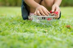 Manos del niño que juegan el carro de la compra en el departamento bajo de la hierba verde imagen de archivo libre de regalías