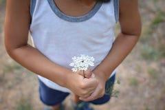 Manos del niño que sostienen una flor Imagen de archivo libre de regalías