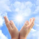 Manos del niño contra el sol. Fotos de archivo libres de regalías