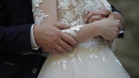 Manos del novio con la novia en el Forest Park Pares de la boda Familia feliz almacen de video