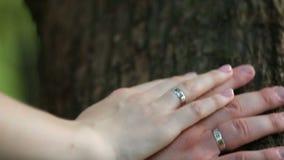 Manos del novio y de las novias con los anillos, en el tronco almacen de metraje de vídeo