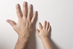 Manos del padre y del hijo Imagen de archivo libre de regalías