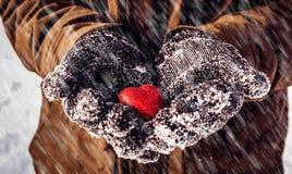 Manos del primer de un adolescente que lleva a cabo el corazón rojo Foto de archivo libre de regalías