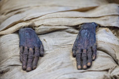 Manos egipcias de la momia Fotografía de archivo