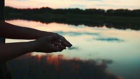 Manos en la puesta del sol cerca de la charca metrajes