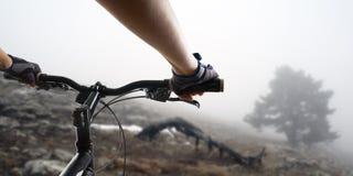 Manos en los guantes que sostienen el manillar de una bicicleta fotografía de archivo