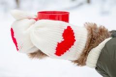 Manos en manoplas con los corazones que sostienen la taza Fotografía de archivo libre de regalías