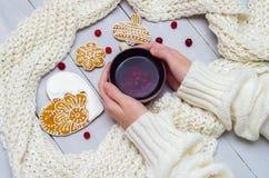 Manos en un suéter que sostiene una taza de té y de una galleta foto de archivo