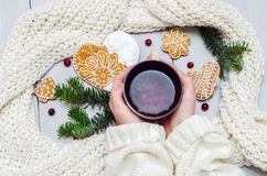 Manos en un suéter que sostiene una taza de té y de una galleta fotos de archivo libres de regalías