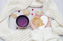 Manos en un suéter que sostiene una taza de té y de una galleta fotos de archivo