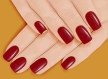 Manos femeninas con la manicura Pulimento de clavo rojo Ilustración del vector stock de ilustración