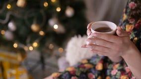 Manos femeninas con la taza de té cerca del árbol de navidad Té de consumición de la muchacha de Beaty almacen de video