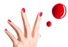 Manos femeninas hermosas con la manicura roja Fotos de archivo