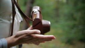 Manos femeninas jovenes que juegan con una cámara marrón en un bosque del pino en el slo-MES almacen de video