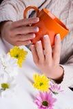 Manos femeninas que sostienen la taza anaranjada Fotografía de archivo