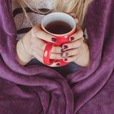 Manos femeninas que sostienen la taza de té caliente foto de archivo libre de regalías