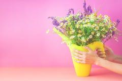 Manos femeninas que sostienen un ramo de wildflowers en un florero brillante en un fondo rosado Espacio de la copia de las hierba fotos de archivo libres de regalías