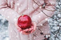 Manos femeninas que sostienen una bola del rojo de la Navidad Día de invierno escarchado en Feliz Navidad del bosque nevoso y Fel Fotografía de archivo libre de regalías