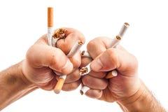 Manos humanas heatedly que rompen los cigarrillos Fotos de archivo libres de regalías